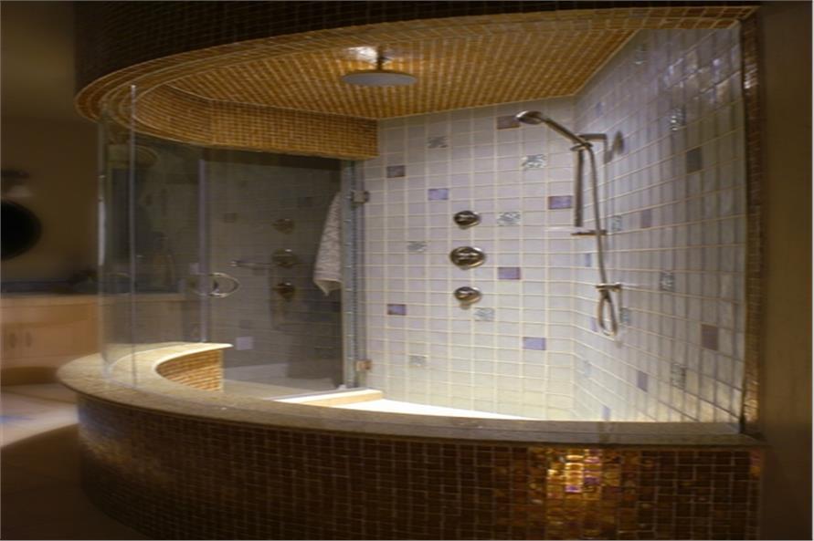 161-1038 master bath shower