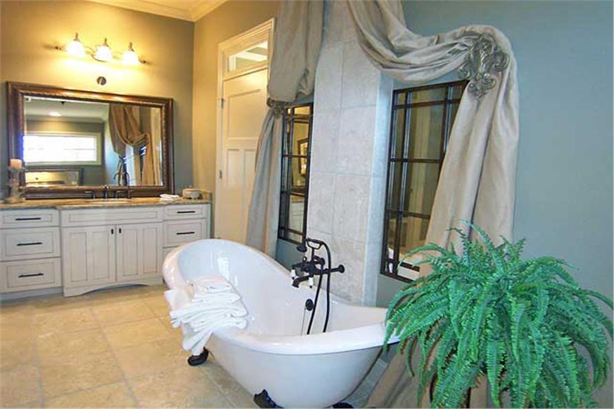 163-1047: Home Interior Photograph-Master Bathroom