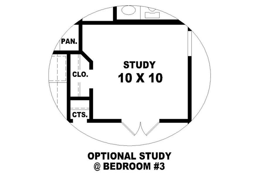 STUDY OPTION