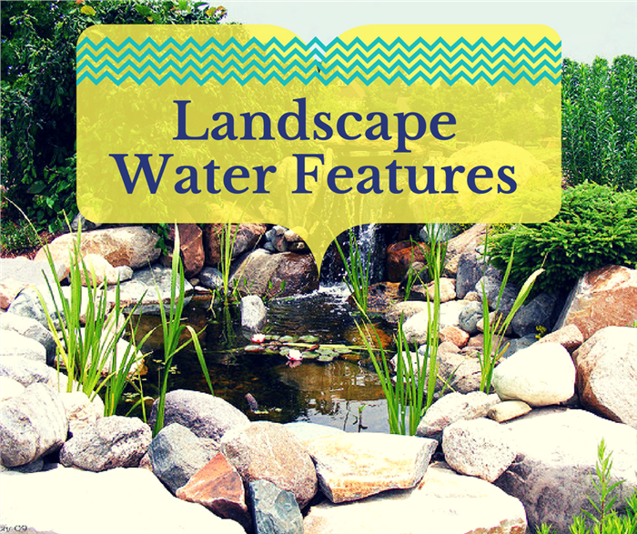 Photo of garden pond illustrating article on landscape water features